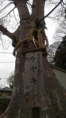横浜 平戸白旗神社2