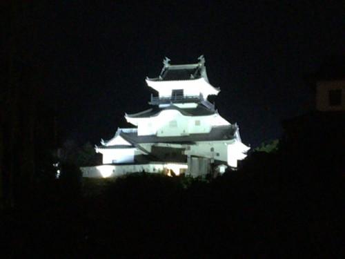 掛川城夜景