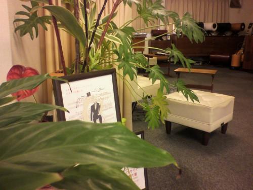 新月のひととき・植物たちが喜ぶ音楽