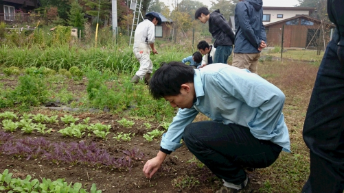 八ヶ岳、ふかふかファームへ研修(3)