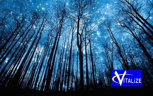 今夜はいて座の新月〜いて座の方今夜からチャンスですよ!