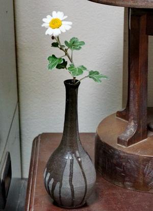 野菊を自作の一輪挿しに活けてみました。野生の花は清楚ですね。