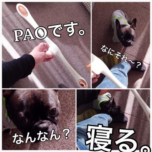 お顔の筋トレ!PAO!