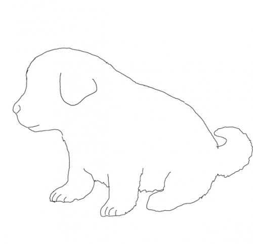 コンクリートの床に子犬のデザイン型押しができます。
