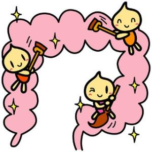 腸の状態を調整する有胞子性乳酸菌について