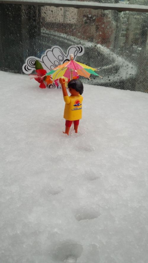 本日は東京初積雪です