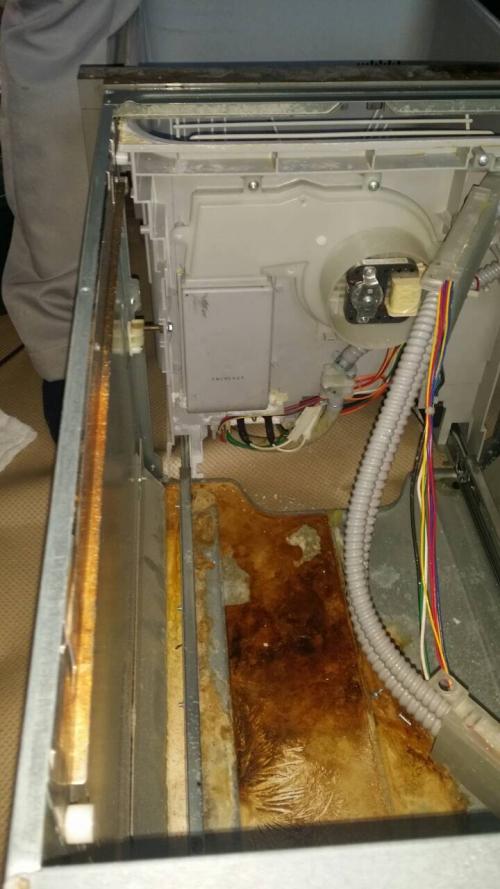 知立市  ビルドイン食器洗い洗浄機修理