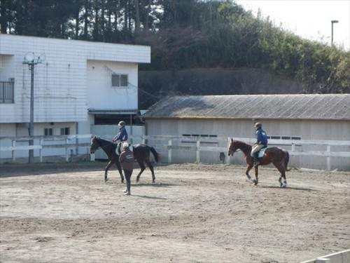 騎手 学校 今日も練習