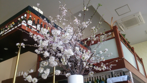 桜並木の目黒川沿いではありませんがお花見できます♪
