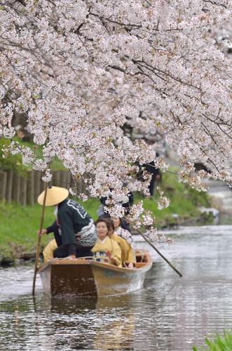 春の舟運 ~小江戸川越春まつり~