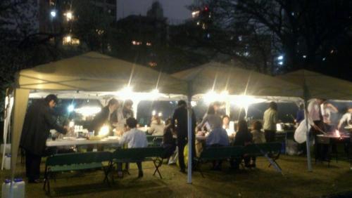 舞鶴公園のお花見模様☆