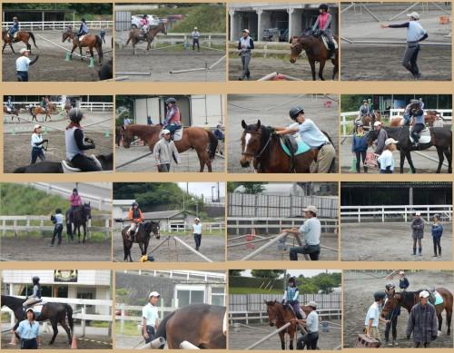 近所の乗馬クラブ