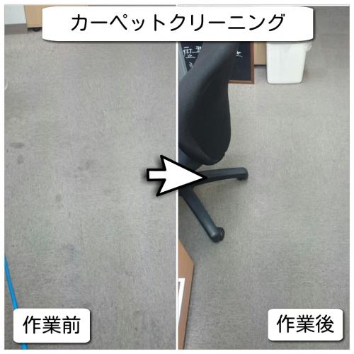 横浜市カーペットの汚れお掃除