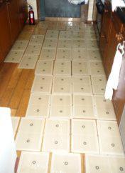一般家庭のネズミ駆除実施