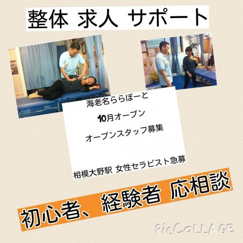 整体求人 神奈川県 急募