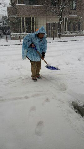 大雪だぁ(*_*)パート3