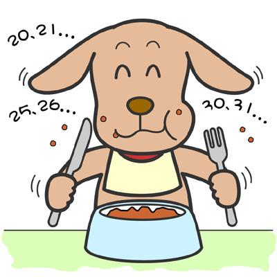 犬、猫の東洋医学での病気の原因になる食べすぎや疲労
