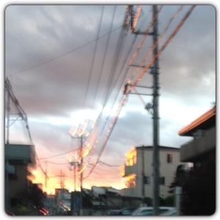 夕焼けで、電線がイルミネーションみたい