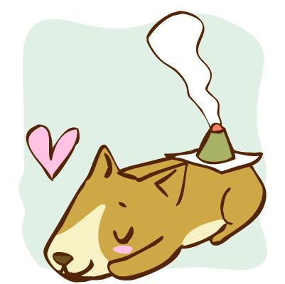 犬、猫の背中の大事なツボの兪穴について