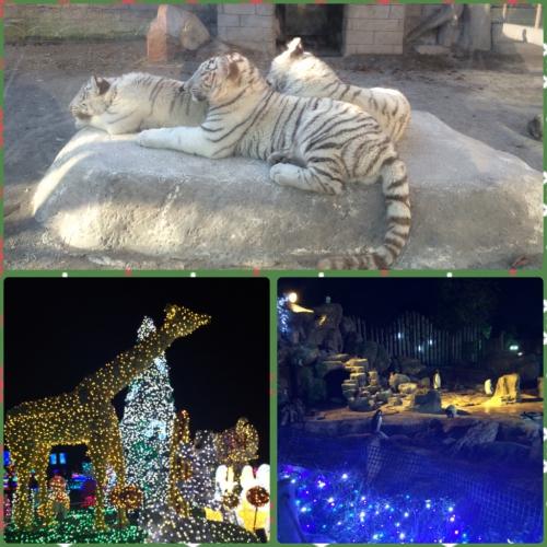 東武動物公園にいってきましたー