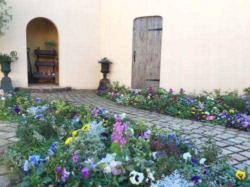 ガーデンスタジオはもう春!