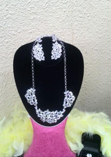 スワローの輝きいっぱいのネックレスとイヤリングセット