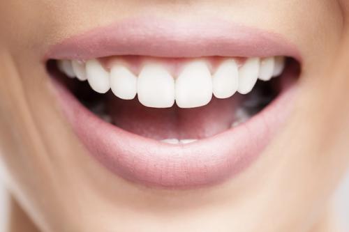 口腔機能と介護、予防についての諸々
