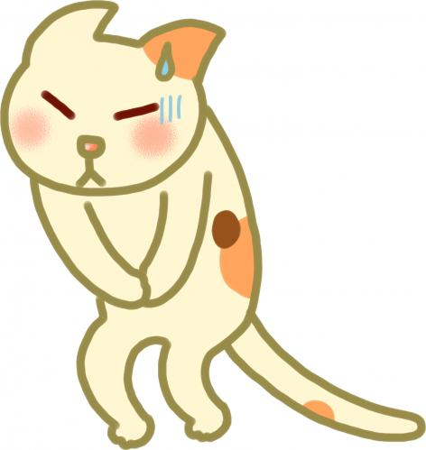 猫の肝臓の病気、胆管炎について