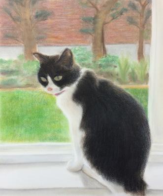 府中市に在住のKさんのパステル画の作品『猫』2点
