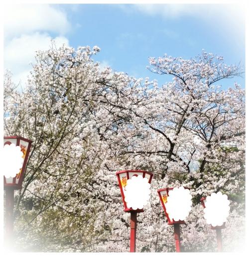 開成山公園の桜〜花より団子〜笑