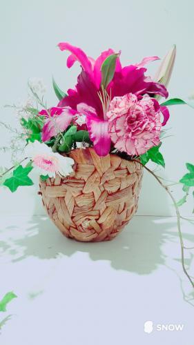 素敵なお花☆