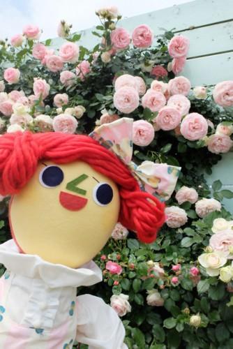 ガーデンスタジオの現在のバラのようす