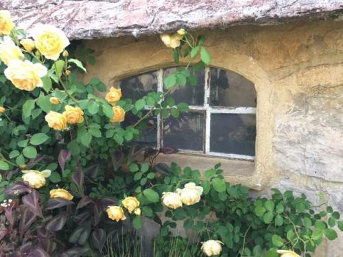 バラの香りに包まれたローズガーデン