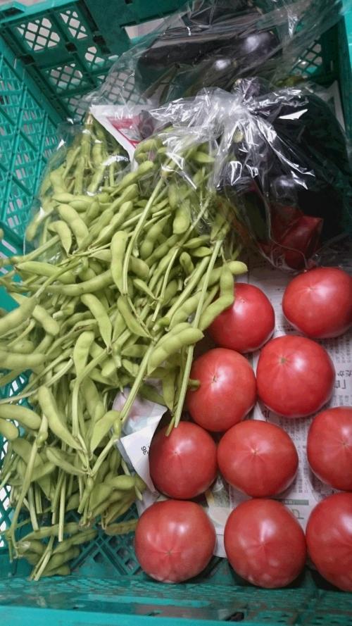 近藤ファームの朝どれ野菜