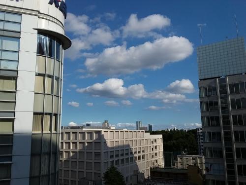 新宿三丁目 雰囲気のある眺めの良いバーから