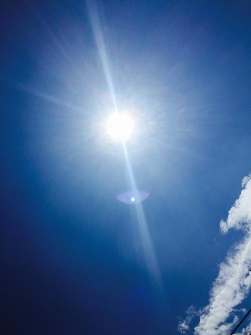 残暑ですが・・季節外れのプチ知識。