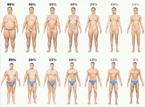 体脂肪がきちんと落ちるダイエットができてますか??