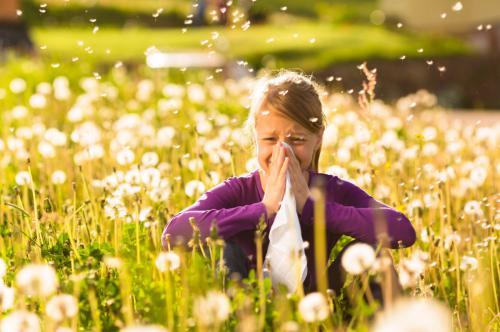 秋の花粉症に注意‼