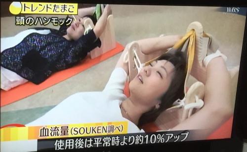 ハンモックピロー体験会 神奈川県