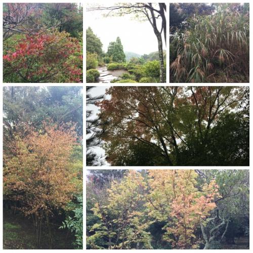 長泉農場 秋の訪れ