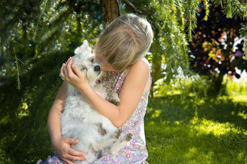 犬と飼主様の絆
