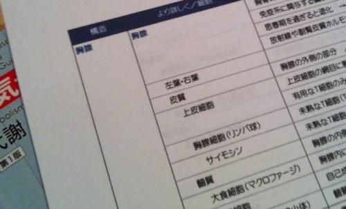 12/13 セッション練習会のお知らせ