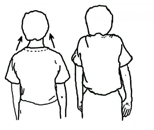 英語の発音は横隔膜呼吸だから肩が動く