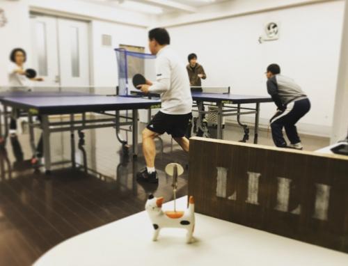 気軽で楽しい卓球♪
