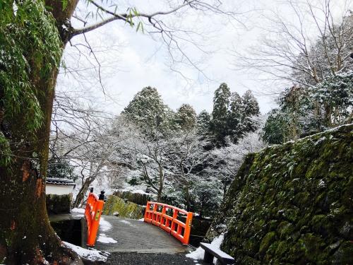 雪の京都❄️調布美容師旅好きのツカ散歩
