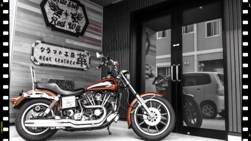 バイク自慢パート4〜HARLEY-DAVIDSON