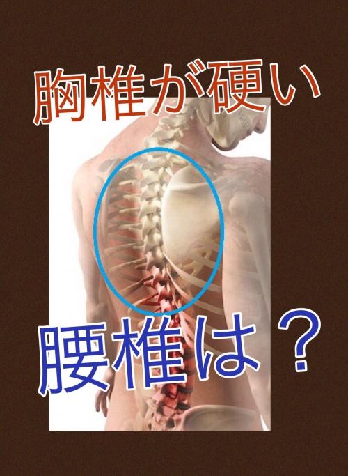 胸椎が硬い 神奈川県川崎 整体学校 カイロプラクティック
