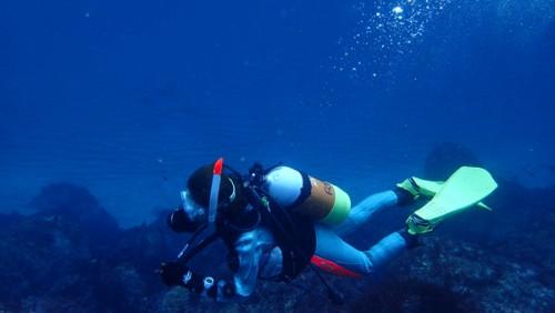 4/3(月) 伊豆海洋公園:海洋実習