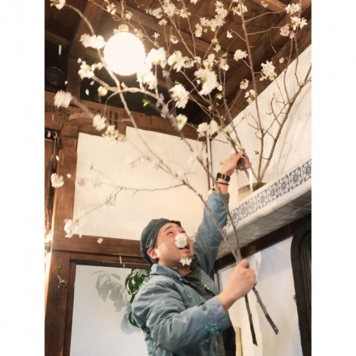 桜!花びら! 代官山 恵比寿 美容室