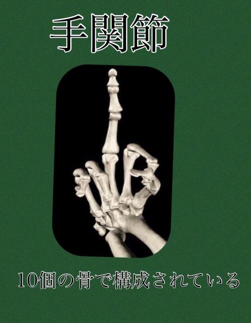 手関節 整体セミナー 神奈川県、東京